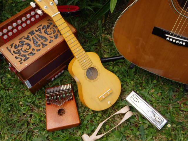 mes instruments de musique  accordeon diatonique, guitare, harmonica, ukulélé ...